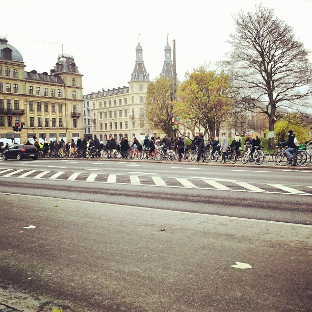At least 100 citizen cyclists at each light here in the rush hour. #cyclechic #copenhagen #bike