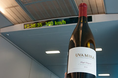 Uva Mira on the Maglev