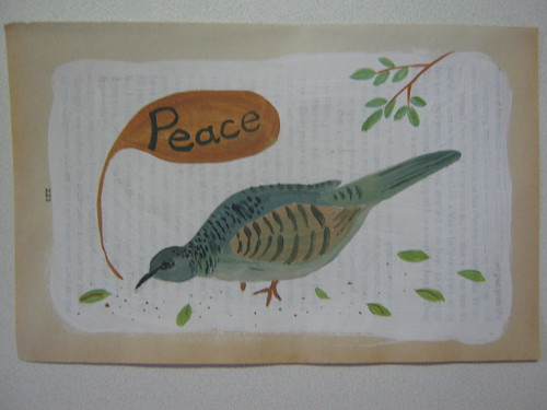 peaceful dove jan 13