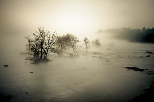 trees winter wild usa rain weather misty fog river photography virginia raw bare windy richmond va rva