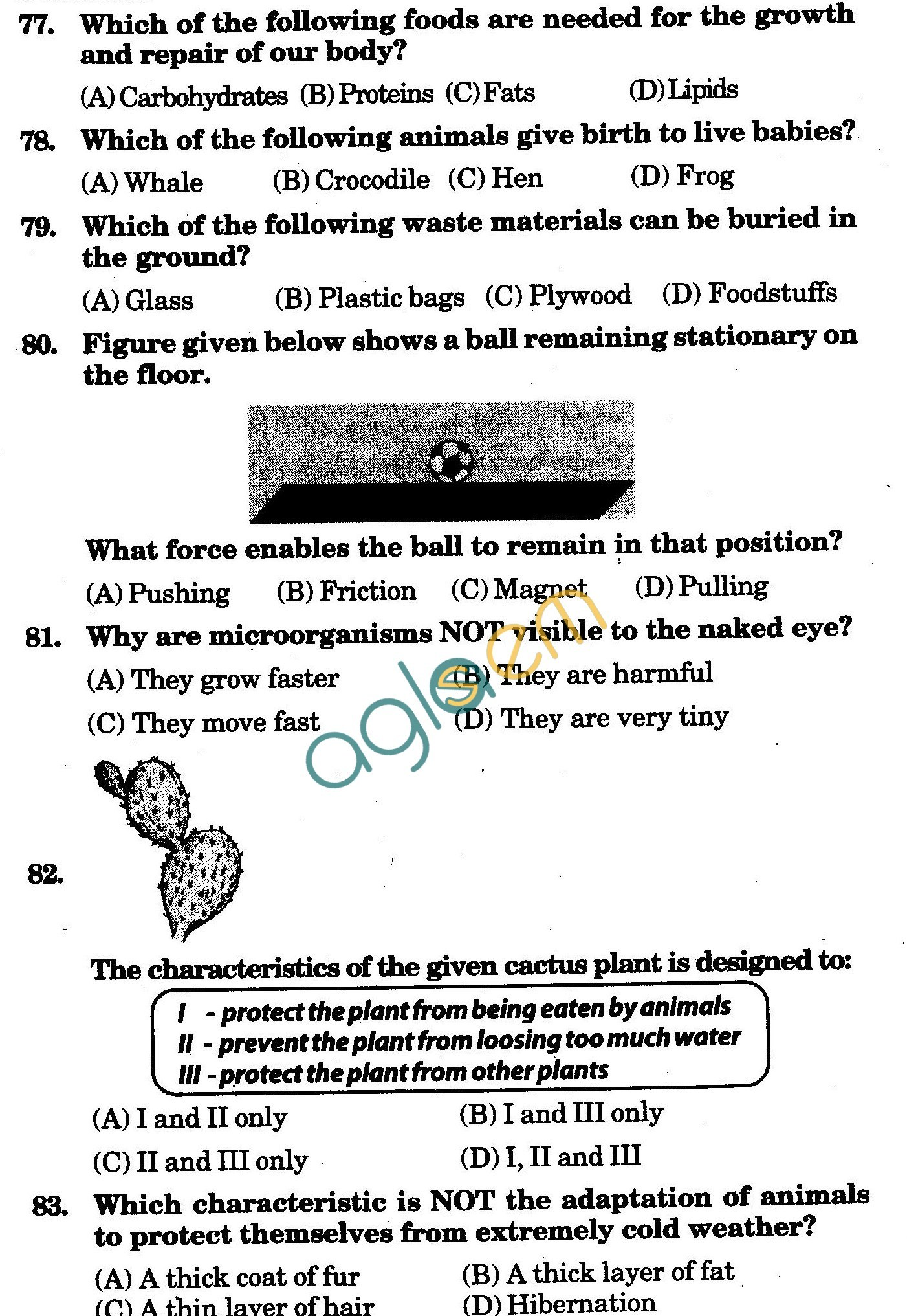 NSTSE 2009 Class IV Question Paper with Answers - Science