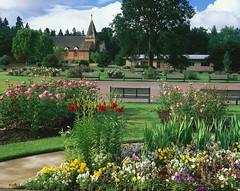 Sara Hite Memorial Rose Garden - horizontal - 008