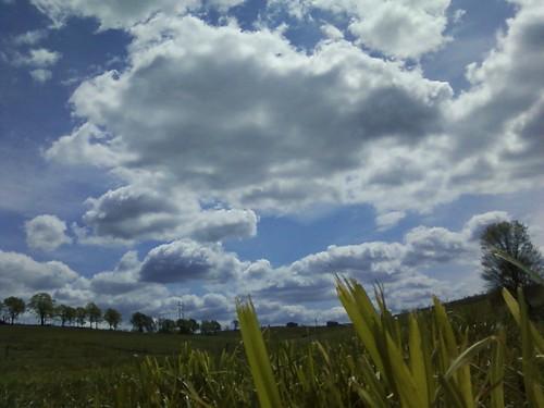 farmscapespring