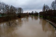 La Seille - Vue depuis le Pont Lothaire