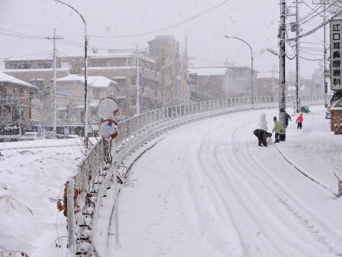 横浜で13cmの積雪