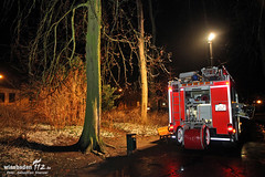 Gewaltdelikt Biebricher Schloßpark 05.02.13
