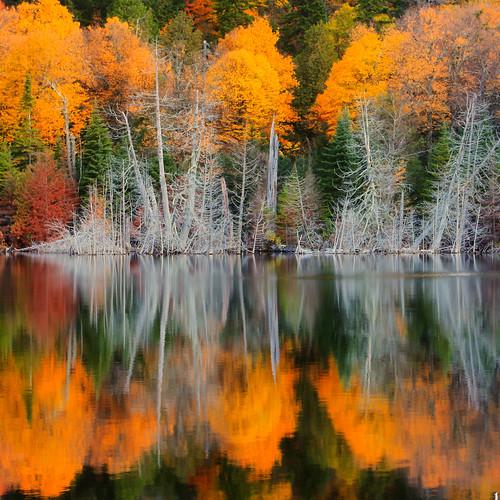 new york autumn giant landscape upstate adirondacks valley keene adk washbowl waterfallguy