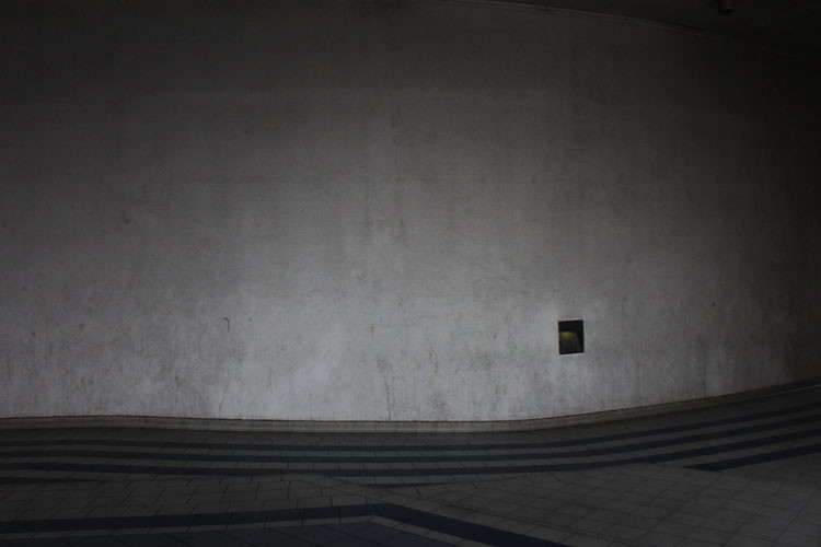 IMG_6861
