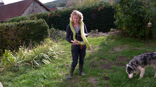 Showing off the snake vegetable