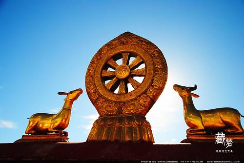 8102248260 f4ecafd331 藏梦●追寻诺亚方舟之旅:神秘藏传佛教   王佳冬个人博客