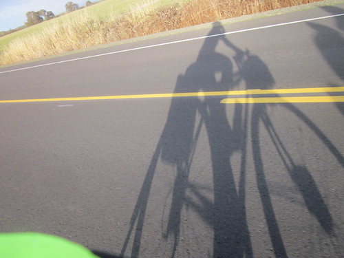 Shadow on Peoria Rd