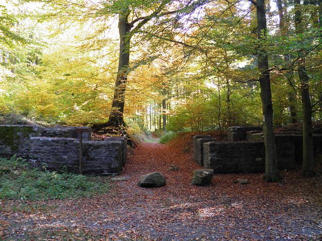 Limeskastell Holzausen, Porta Sinistra