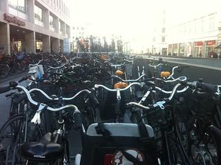 OMG bikes!