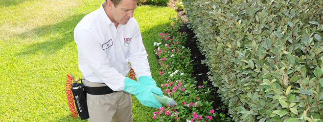 Pest Control Dallas Tx Abc Home And Commercial Services