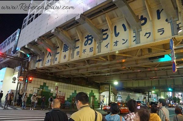 apan day 2 - Ueno, Tokyo station, akihabara-108