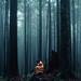 Her Mystified Mind by Elizabeth Gadd