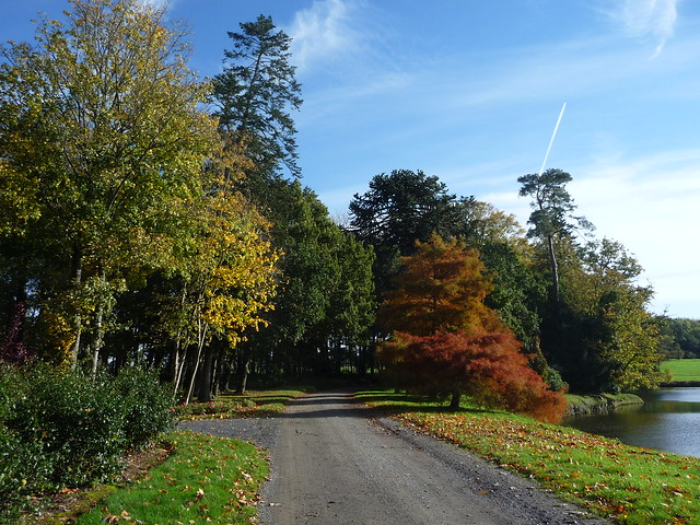 Normandy in October