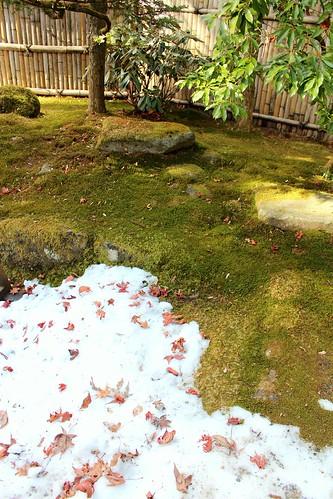 Nikko Toshogu garden4