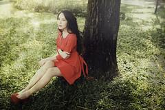 [フリー画像素材] 人物, 女性 - アジア, ワンピース・ドレス, 人物 - 森林, 女性 - 座る ID:201301141800