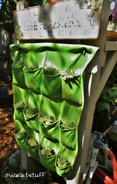 Succulent shoe rack