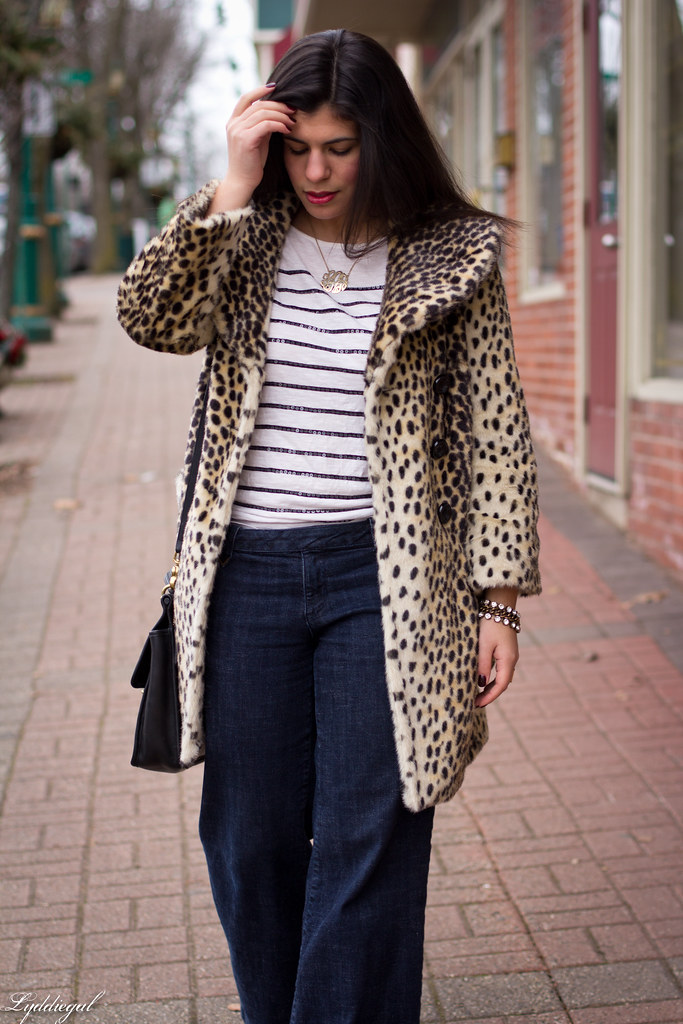 spots and stripes-2.jpg