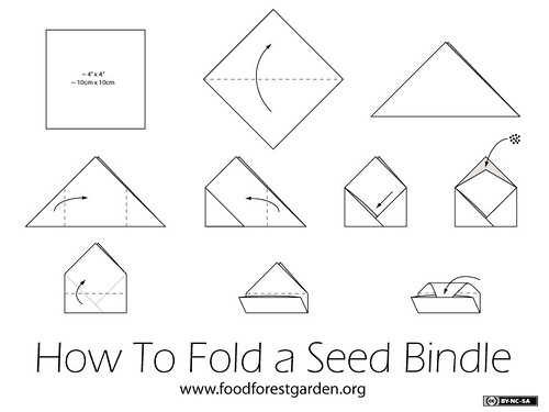 How To Fold a Seed Bindle