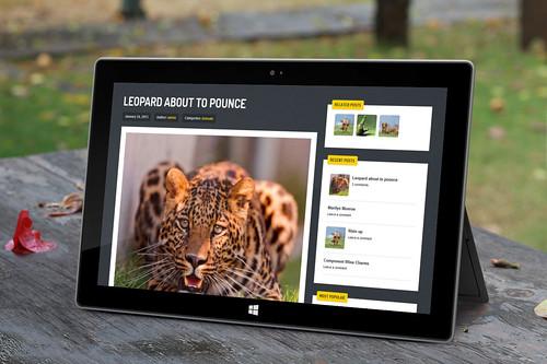 Streak - Responsive WordPress Theme - Tablet