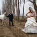 Wedding Shoot at a Horse Farm