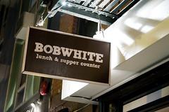 Bobwhite