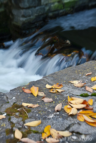 Autumn at Graue Mill - 01