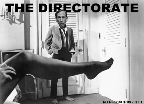THE DIRECTORATE by Colonel Flick