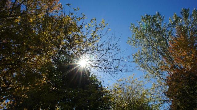 anteketborka.blogspot.com, étoile444