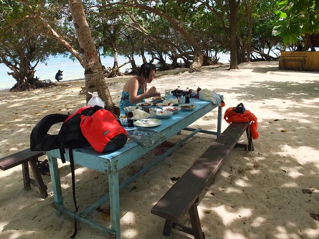 在沙灘, 大海, 椰子樹的環繞下享用午餐
