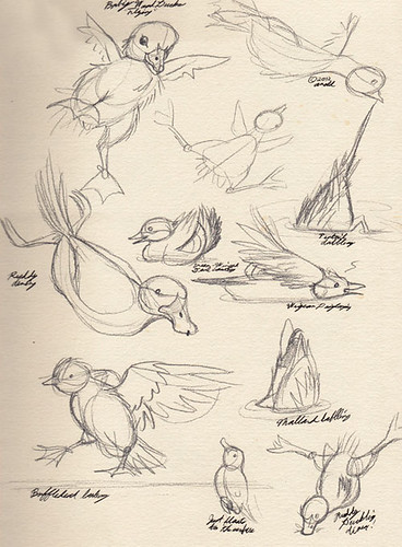 "11.15.12.""An Original Duck-umentary"" Sketches"