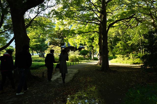 Hama-rikyu Gardens 4