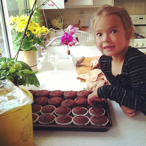 Sneaking a cupcake.