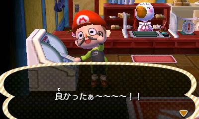 【20121121】とびだせ どうぶつの森日記