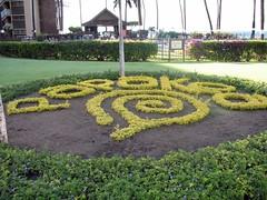 labyrinth(0.0), road surface(0.0), flooring(0.0), backyard(1.0), outdoor structure(1.0), shrub(1.0), flower(1.0), garden(1.0), soil(1.0), grass(1.0), yard(1.0), landscaping(1.0), lawn(1.0),