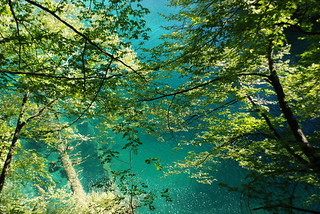 Immagine di Kozjak lake. see nationalpark wasser croatia hrvatska balkan plitvice kroatien
