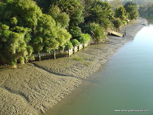FotoFriday 3: Waimata River Gisborne