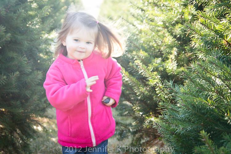 ChristmasTreeFarm12-7811.jpg