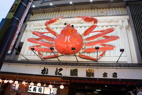 那麼大隻蟹不會認錯啦~