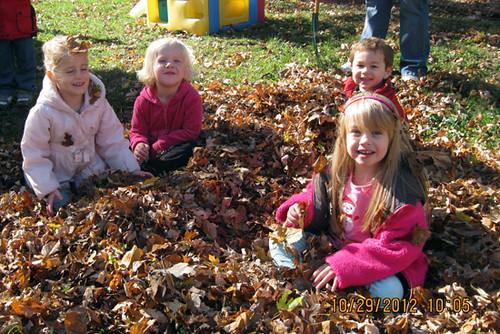 Leaves_Autumn-Sitting