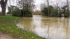 floodplain(1.0), flood(1.0), soil(1.0), event(1.0), river(1.0), disaster(1.0), pond(1.0), waterway(1.0),