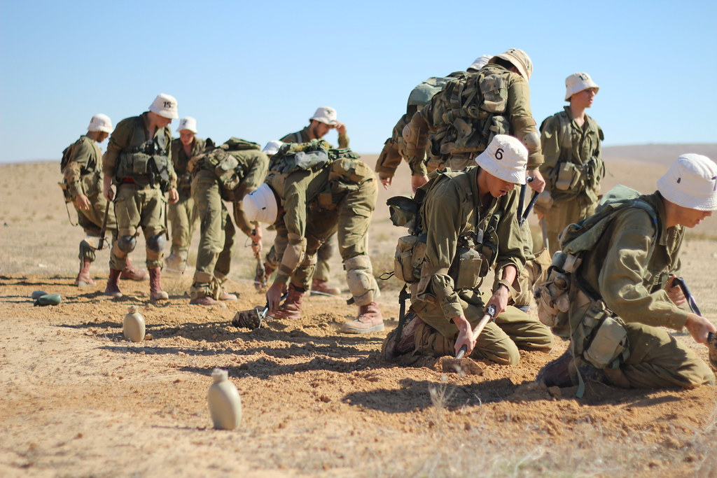 Fuerzas de Defensa de Israel ( צְבָא הַהֲגָנָה לְיִשְׂרָאֵל, Tsva Hahagana LeYisrael) - Página 3 8229640686_28a91ce1f7_b