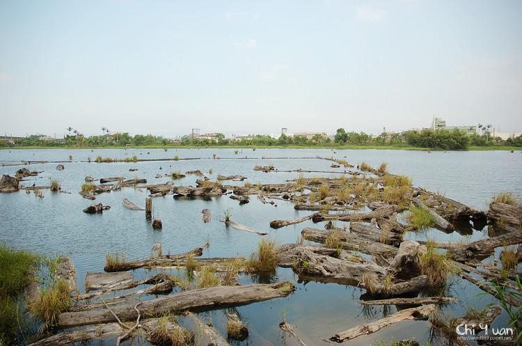 羅東林業文化園區-貯木池04.jpg