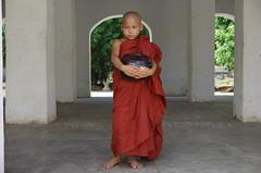 Theravada Monks In Burma