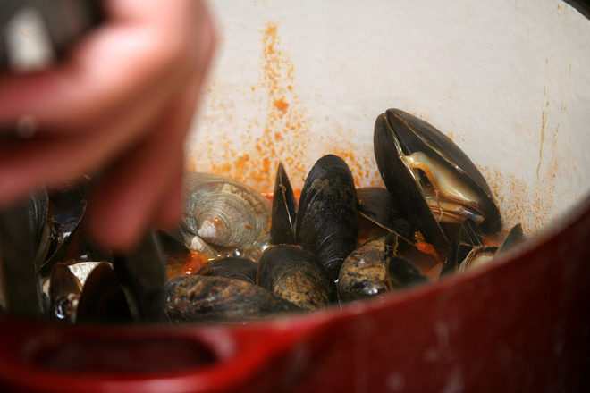 mussels fra diavolo 3