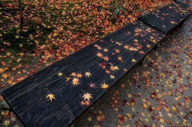 「紅葉の飾り」 室生寺 - 奈良