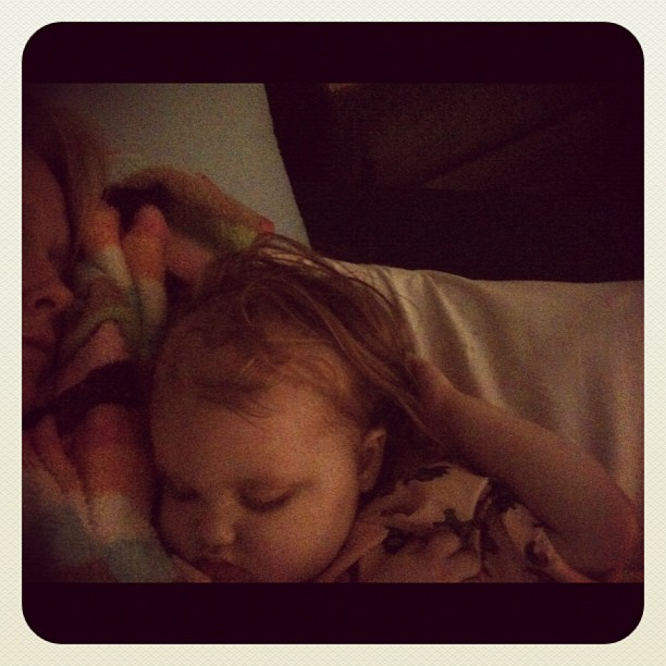 #gingerfight #reesey #prayersforreesey #sleepygirl #cuddletime #dbj